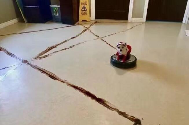 评价最好的速度机器人:小米扫地机器人